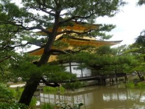 vue à travers les arbres du papivllon d'or