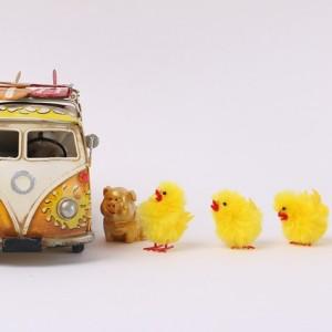 bus-620760_640