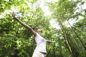 Personne en tee shirt blanc les bras ouvert et regardant vers le haut avec le soleil qui passe au dessus d'elle entre le feuillage des arbres