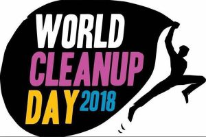 logo du World clean up day