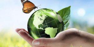 une main portant un globe vert représentant la terre et un papillon volant au sommet