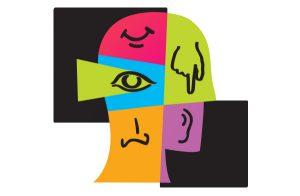 nos cinq sens représentés dans un dessin de tête de profil